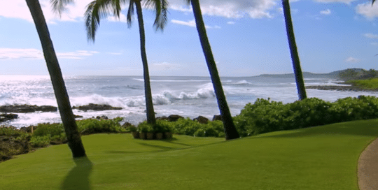 Perillo Tours Hawaii Islands video by Merging Media gives insite into the Explore Hawaii Tour, thumbnail of video is a beautiful view of a perfectly manicured lawn wit palm trees against a back drop of the rolling ocean (video production by Merging Media).