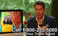 Man (Steve Perillo) wearing a navy sport coat and yellow button up, promoting the Perillo Tours Omnibus Commercial, cheers a glass of red wine to the viewers, words on screen; Call 1-800-255-5000 or Call Your Travel Agent (video production by Merging Media).