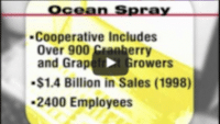 USWeb Ocean Spray Case Study Video thumbnail is text only, reads; Ocean Spray, Cooperative includes over 900 cranberry and grapefruit growers, 1.4 billion in sales (1998), 2400 employees.